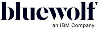 Bluewolf logo | LinkPoint360 Salesforce Partners